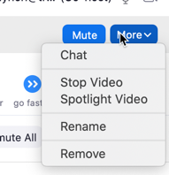 Screenshot of remove feature in Zoom